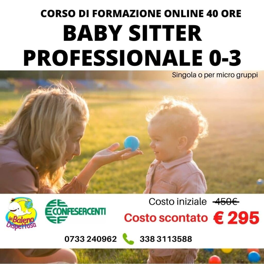 baby sitter professionale